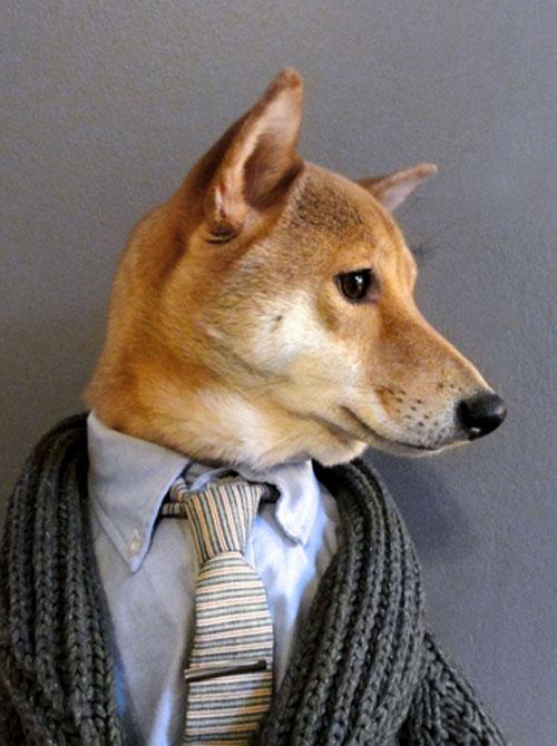 menswear-dog-tumblr-1.jpg